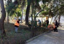 Εργασίες καθαριότητας κοινόχρηστων χώρων στις Εργατικές Κατοικίες και το Πολύδροσο
