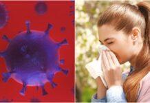 κορωνιος εποχικες αλλεργιες