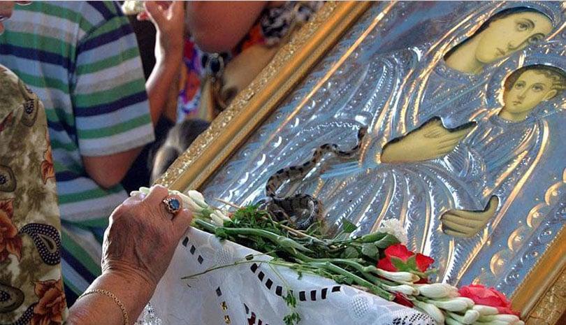 Κεφαλονιά: Βγήκαν και φέτος τα φιδάκια της Παναγίας!