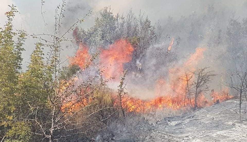 φωτιά Έβρος